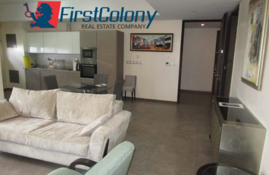Fully Furnished Upscale 2 Bedroom Apartment